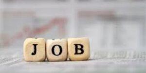 Jobangebot - Toujours Plüss